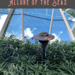 Best Things to Do on Allure of the Seas: A Perfect 24 Hours 1