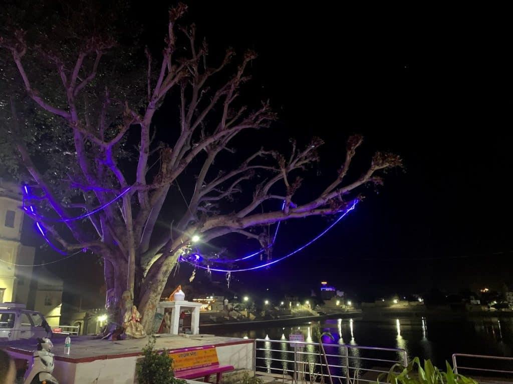 pushkar lake evening