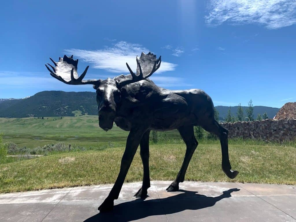 best jackson hole attractions