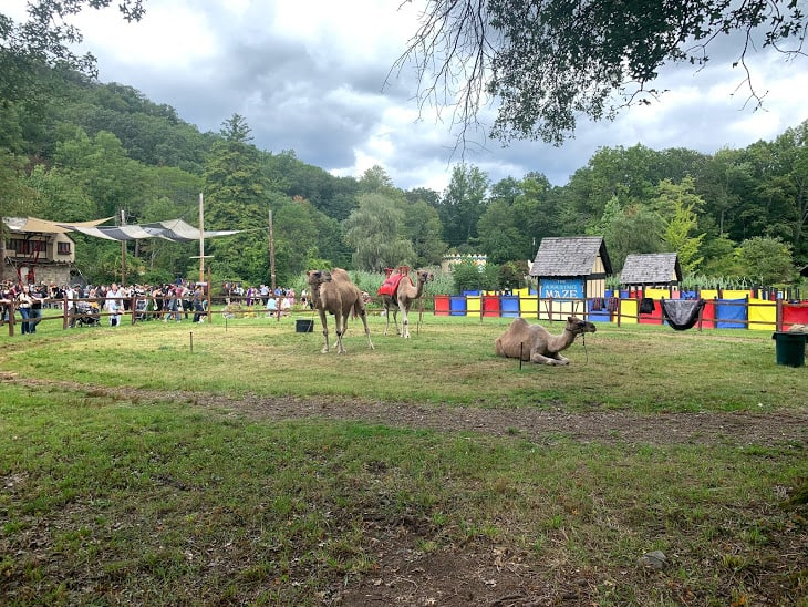 things to do in the new york state renaissance faire