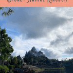Animal Kingdom Itinerary: A Perfect 24 Hours 1