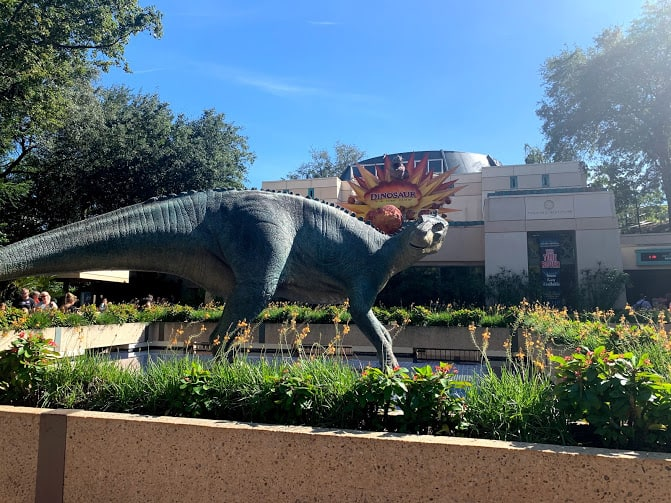 Animal Kingdom Itinerary: A Perfect 24 Hours 3
