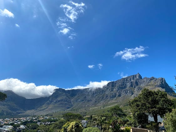 most unique things to do in cape town